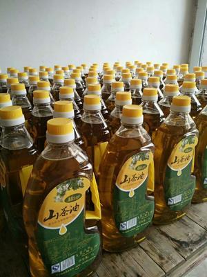 浙江省衢州市常山县压榨一级山茶油