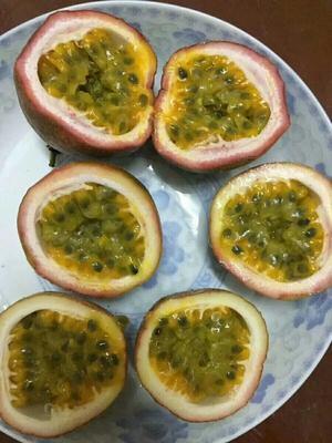 广西壮族自治区玉林市北流市百香果汁 塑料瓶 6-12个月