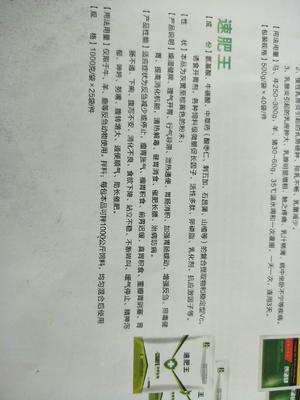 河南省焦作市沁阳市其它农资