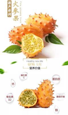 福建省龙岩市新罗区火参果 0.5斤以上
