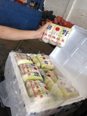 福建省厦门市集美区高山娃娃菜 4~5两以上