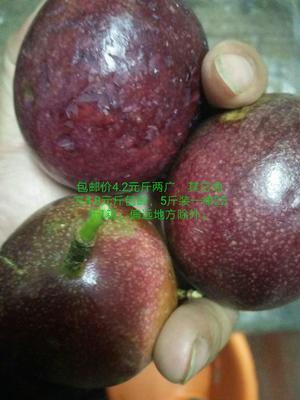 这是一张关于紫香一号百香果 80 - 90克的产品图片