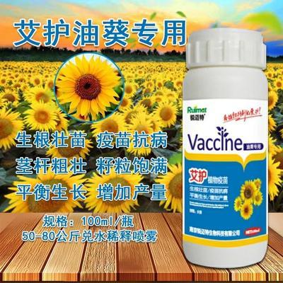 江苏省南京市江宁区艾护油葵专用植物疫苗