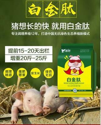 河南省郑州市金水区催肥增重