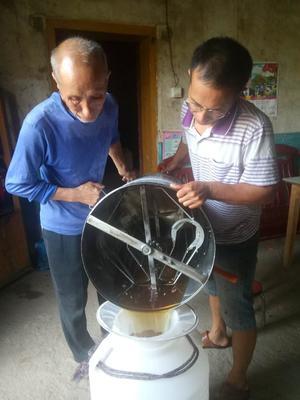 江西省宜春市铜鼓县土蜂蜜 玻璃瓶装 98% 1年