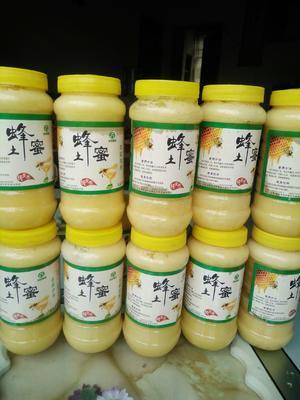 云南省昭通市镇雄县土蜂蜜 玻璃瓶装 100% 2年以上