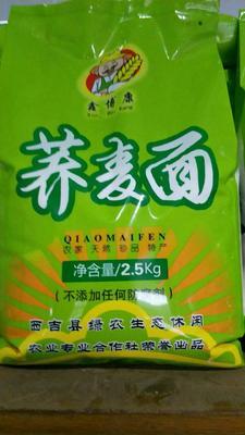 宁夏回族自治区固原市西吉县荞麦面粉