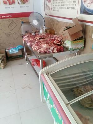 河北省石家庄市晋州市羊肉类 生肉
