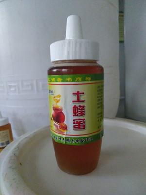 河北省石家庄市赞皇县土蜂蜜 塑料瓶装 100% 2年
