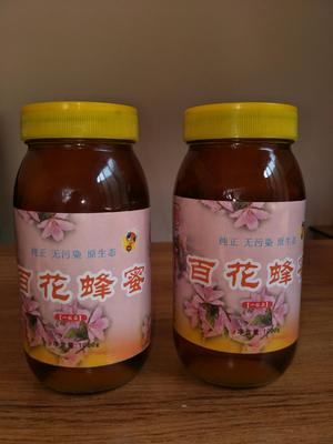 这是一张关于土蜂蜜 玻璃瓶装 100% 1年的产品图片