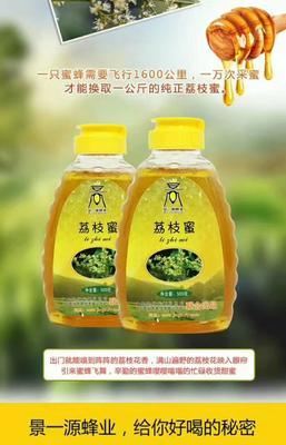 广东省茂名市高州市土蜂蜜 桶装 100% 2年以上