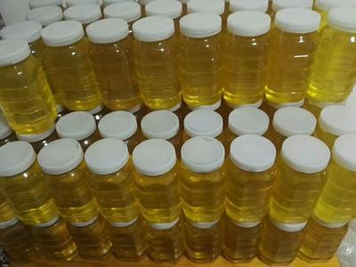 黑龙江省哈尔滨市呼兰区土蜂蜜 塑料瓶装 100% 2年以上