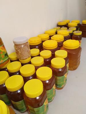 黑龙江省绥化市庆安县土蜂蜜 塑料瓶装 100% 2年以上