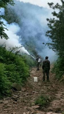 这是一张关于喷雾机的产品图片