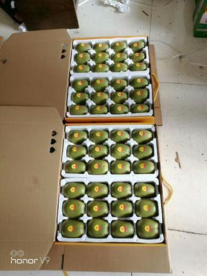 这是一张关于红心猕猴桃 70克以上 的产品图片