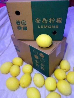 四川省资阳市安岳县尤力克柠檬 2 - 2.6两