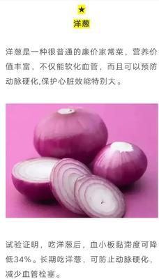 这是一张关于红皮洋葱 6~8cm 红皮 3.5~4两的产品图片