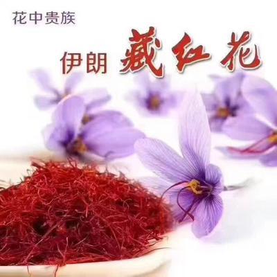 青海省西宁市城东区红花