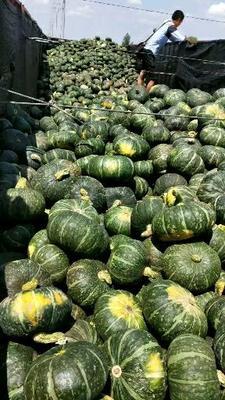 这是一张关于板栗南瓜 0.4~0.6斤 扁圆形的产品图片