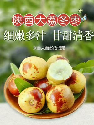 陕西省渭南市临渭区冬枣 直口 20-30g