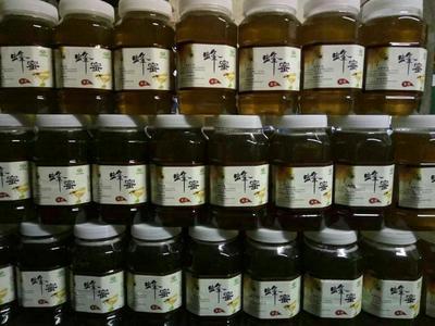 这是一张关于土蜂蜜 塑料瓶装 95%以上 2年以上的产品图片