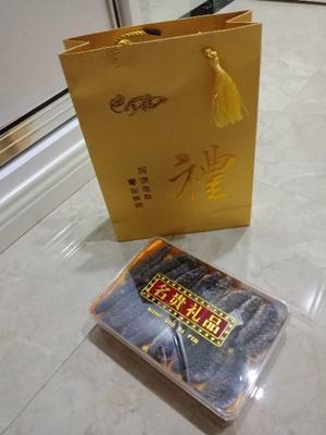 浙江省温州市瓯海区野生海参