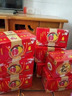 福建省漳州市平和县平和蜜柚 1.5斤以上