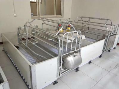 这是一张关于母猪产床的产品图片