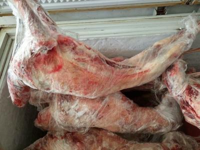 山东省济宁市市中区羊肉类 生肉