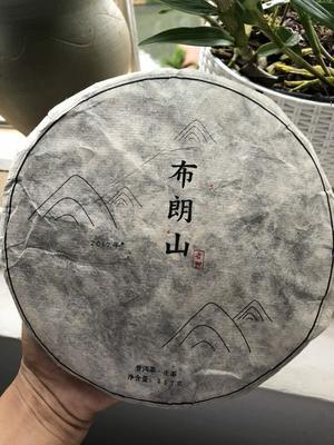 云南省西双版纳傣族自治州景洪市普洱饼茶 盒装 一级