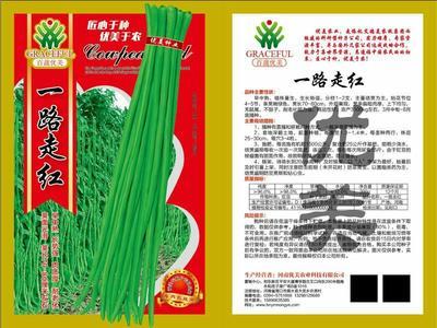 河南省周口市商水县豆角种子 ≥97%