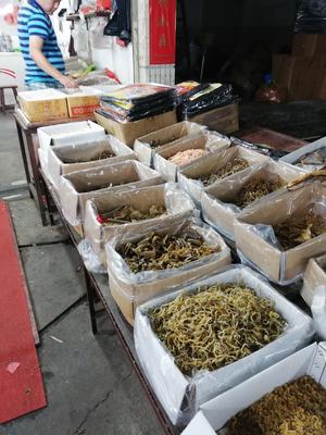 福建省宁德市蕉城区鳗鱼干
