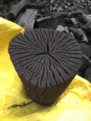 福建省泉州市安溪县栎树木炭