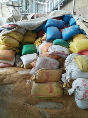 江西省赣州市章贡区有机米 有机大米 晚稻 一等品