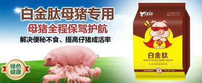 河南省新乡市原阳县怀孕母猪饲料