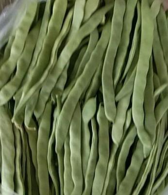 黑龙江省哈尔滨市双城市绿翡翠长豆角 8~15cm以上 不打冷