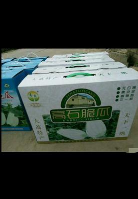 陕西省渭南市大荔县高石脆瓜 1.5斤以上
