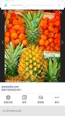 云南省德宏傣族景颇族自治州瑞丽市无眼菠萝 1.5 - 2斤