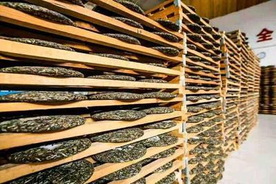 云南省普洱市澜沧拉祜族自治县景迈古树茶 盒装 特级