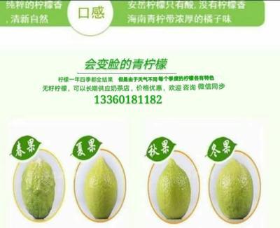 这是一张关于青柠檬 2 - 2.6两的产品图片