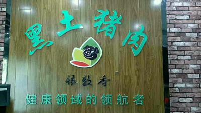 河南省周口市太康县土猪肉 生肉
