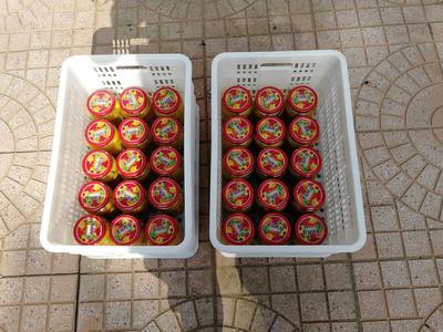 山东省潍坊市青州市黄桃罐头 18-24个月