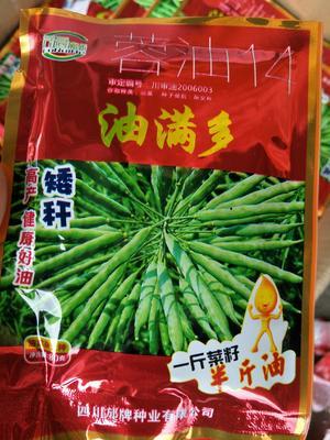江苏省宿迁市沭阳县油菜籽种子 杂交种 ≥98% ≥90% ≥98% ≤9%
