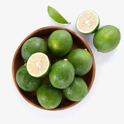 广西壮族自治区南宁市西乡塘区香水柠檬 1.6 - 2两
