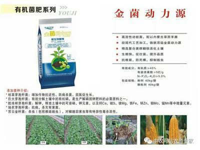 北京东城区微生物有机肥