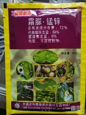 这是一张关于粉剂农药 可湿性粉剂 袋装的产品图片