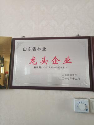 山东省济南市平阴县原生态核桃油