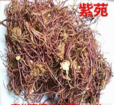 河北省保定市安国市紫菀