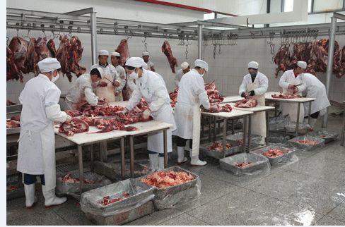 藏族牦牛肉 生肉