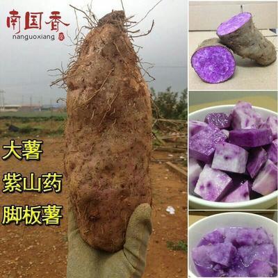 广东省湛江市徐闻县紫板薯 1斤以上